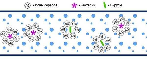 Ионы серебра обеззараживают  воду, блокируя бактерии и микроорганизмы