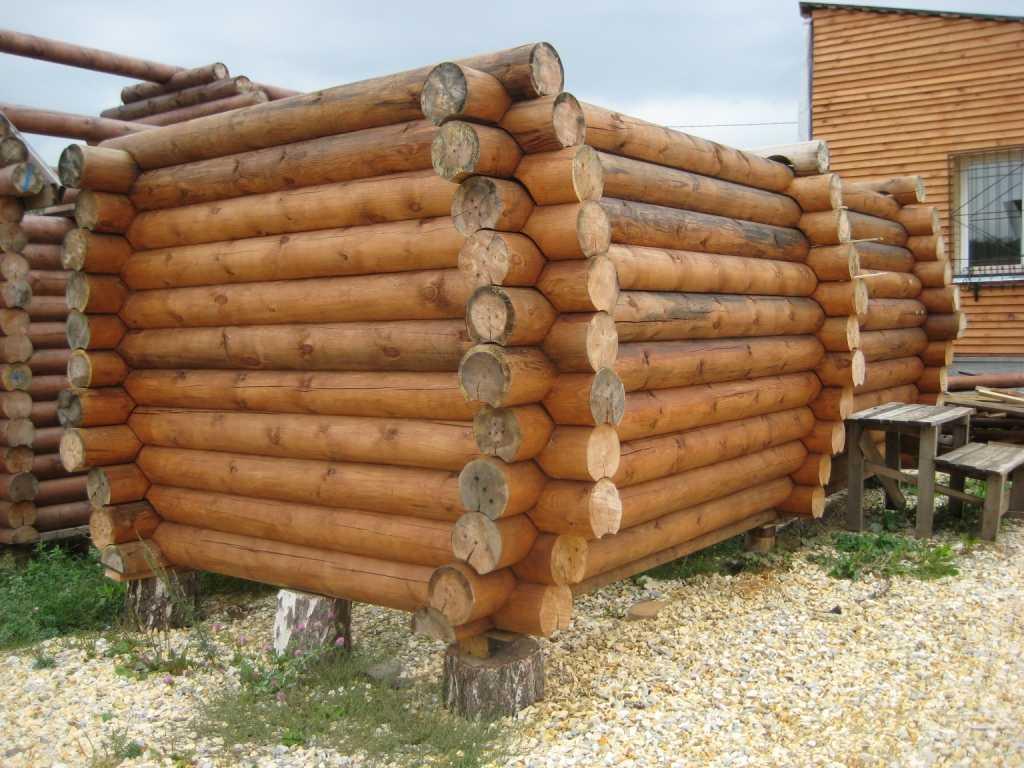 Построить баню из бревна своими руками фото 267