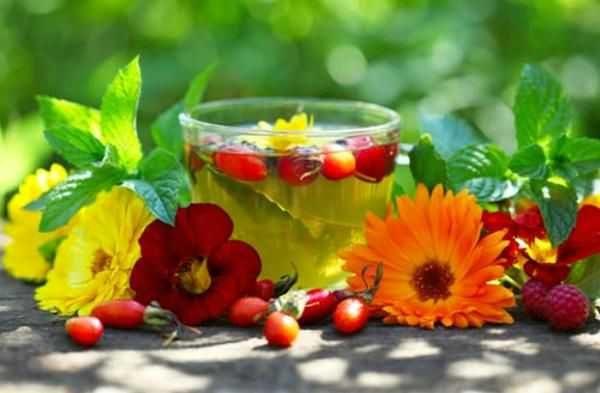 Витаминный сбор - много компонентов, проверенный рецепт