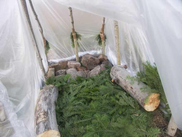 На пол бани-палатки лучше уложить хвойный лапник