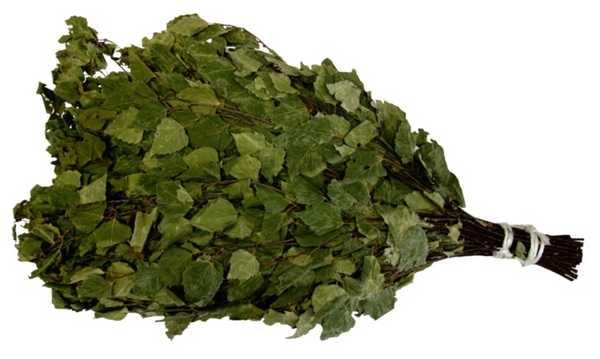 Самый простой способ - плотно связать веник натуральной бечевкой у комля и у начала листвы