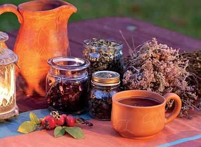 Заваривать чай из трав нужно не кипятком, а горячей водой