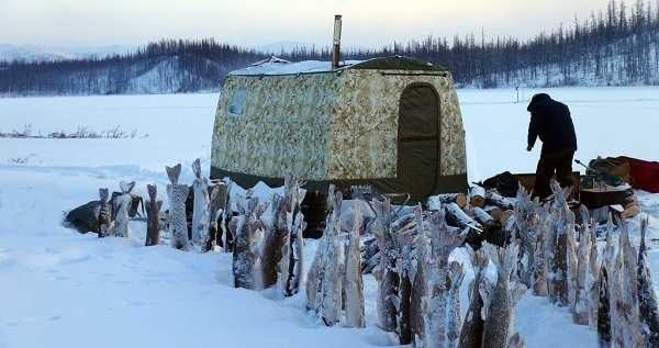 """Зимняя """"Мобиба"""" - действительно зимняя"""