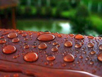 На поверхности формируется пленка, которая не дает впитываться воде